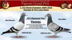 FCI Diamond Pair-2010-dez-09