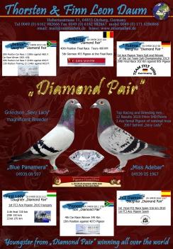 DiamondPairA4Hoch